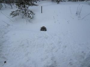 Radiostyrd pansarvagn som fastnat i snön
